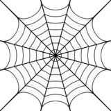 Vector illustration of cobweb