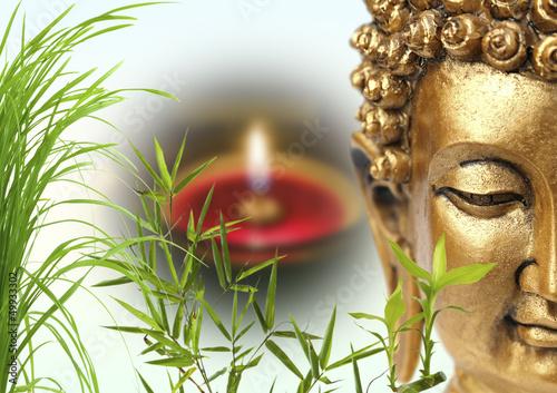 Fototapeten,buddhas,gras,bambus,licht