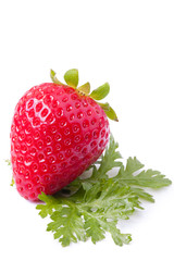 Strawberries on white background_VII
