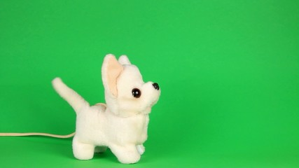 toy dog barking and walking