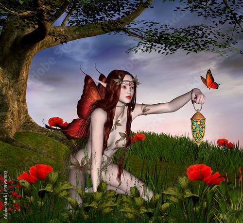 Fototapeten,fairy,fantasy,frau,kobold