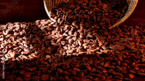 Time lapse window light passing over cocoa beans