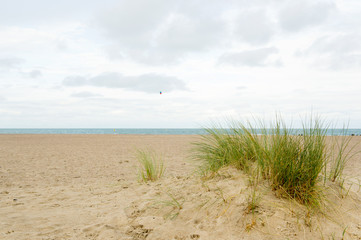 Empty beach in Holland