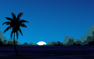 Coconut palm tree and the star sky