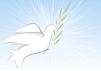 colomba con ulivo