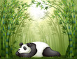 A panda sleeping between the bamboo trees