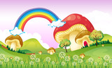 Mushrooms near the rainbow