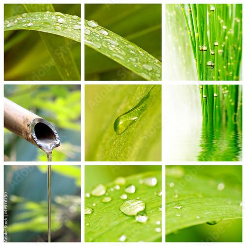 Fototapeten,wasser,zen,natur,fallen aufsteigen