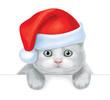 Vector of cute kitten in Santa's hat hiding by blank.