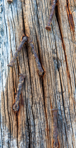 Wood and rusty nails