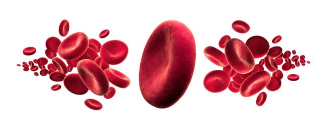 Rote Blutkörperchen vor Weiss 3