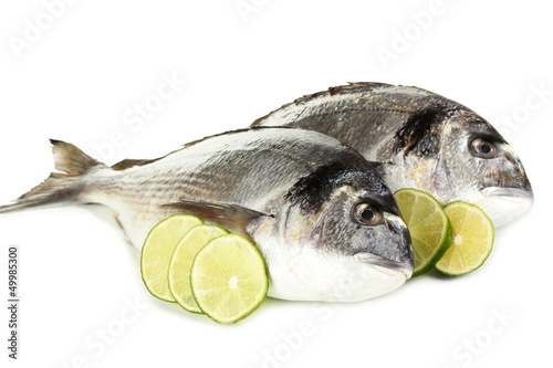 Two fish dorado with lemon isolated on white