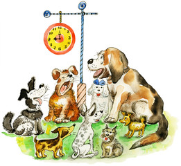 Group of different barking funny dogs