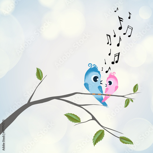 Two birds flirting and singing on branch