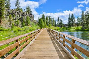 A Wooden Footbridge along a Trail