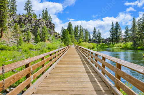 A Wooden Footbridge along a Trail