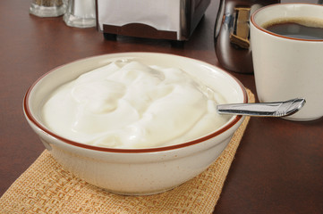 Bowl of plain yogurt