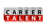 career talent cubes poster
