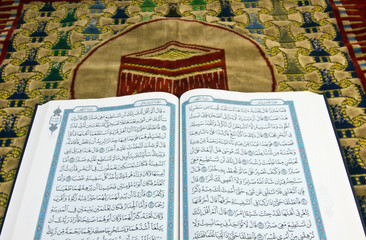 HOLLY QURAN OVER PRAY CARPENT