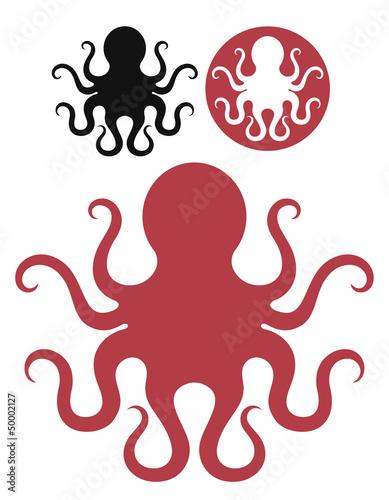 Fototapeta Octopus