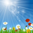 Vector Natural Background with Flowers and Blue Sky
