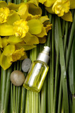 spa and wellness - essential oil
