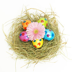 Easter nest with a pink flower