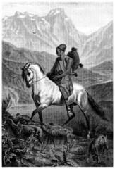 Kabylia : Sheperd - Berger - Schäfer