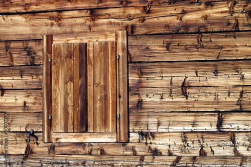 Holzhütte - wooden cabin - 50007190
