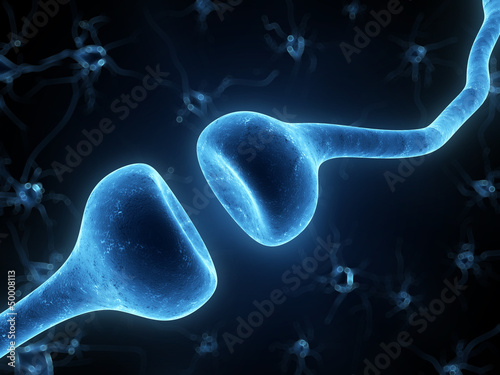 3d rendered illustration of a human receptor