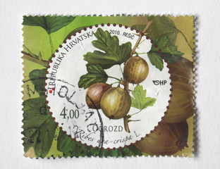 gooseberry stamp from Croatia
