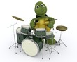 tortoise playing the drums