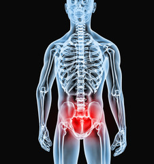 Radiofrafia  cuerpo humano