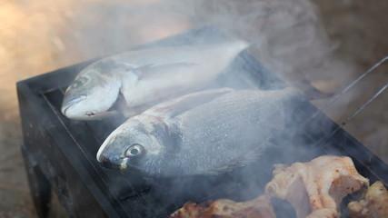 barbecue fish