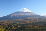Mt. Fuji with Aokigahara forest in autumn, Japan