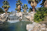 Waterfall in Palm Desert