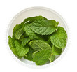 fresh mint leaves in cup isolated on white background.
