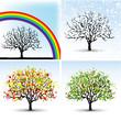 seasons, summer, spring, autumn, winter, a set of trees