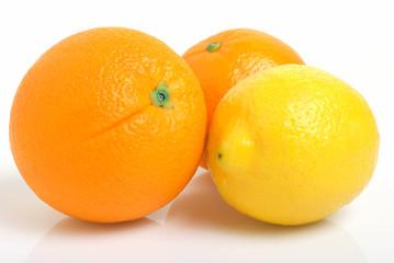 Citrus fruits.