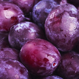 Plums fruit