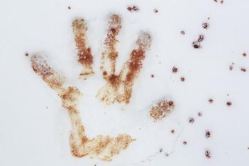 blutiger handabdruck im schnee