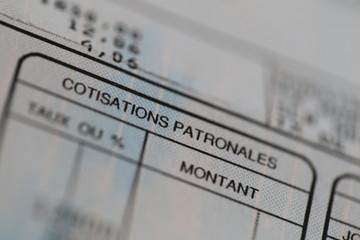 Détail Bulletin : Cotisations Patronales