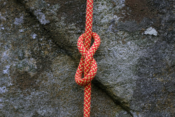Figure of Eight Knot 1