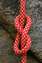 Figure of Eight Knot 4