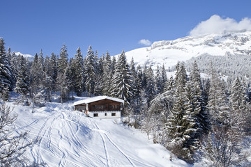 Winter in Swiss alps. Alpine scenery with chalet.