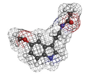 melatonin hormone, molecular model.