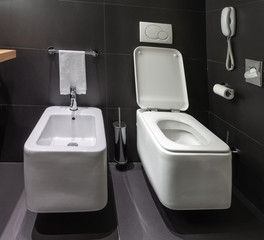 Modern toilet and bidet in bathroom