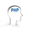 php, lernen, programmieren, skript, programmierer,