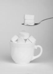 Sugar lumps in cup