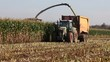 Harvesting the maize crop for silage